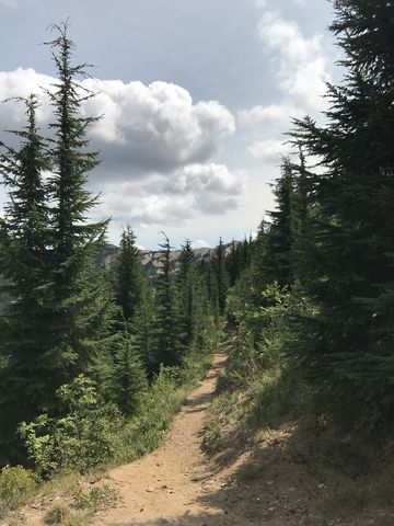 Most of the trail is a nice singletrack