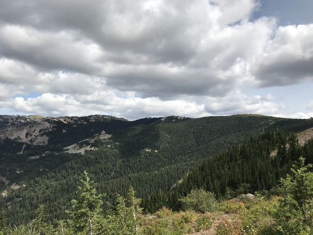 The forested hillsides stretching out to Latour Peak