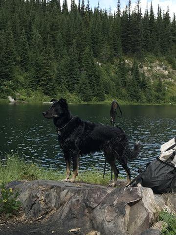 Naughty at the peninsula on Crystal Lake
