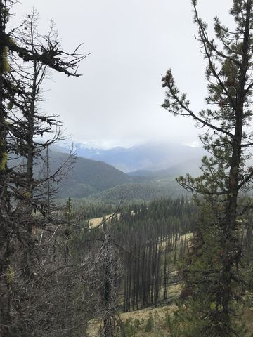 View from Granite Peak towards the Mallard-Larkins crest