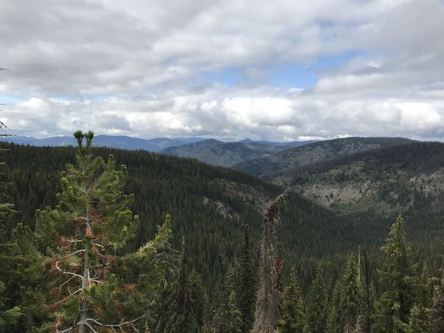 View from Scribner Falls trail. The falls are on that bare granite patch in the center-left of the photo