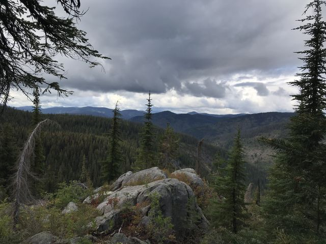 View from Scribner Falls trail towards Snow Peak