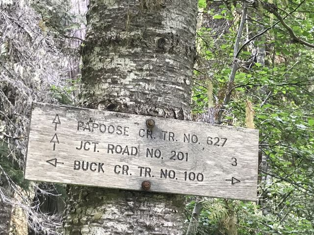 A signed intersection in the overgrown woods. Heading right gets you into this….