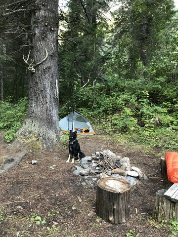 A pretty campsite is right next to the cabin, complete with…