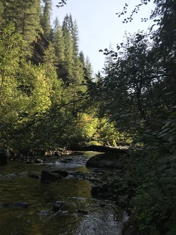 Sawtooth Creek. It was the deepest fording, about knee-deep