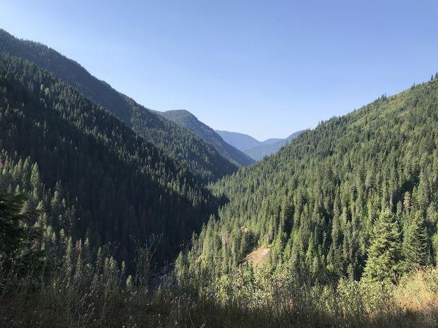 Larkins Creek canyon