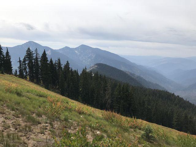 An alpine meadow on the south face of Mallard Peak