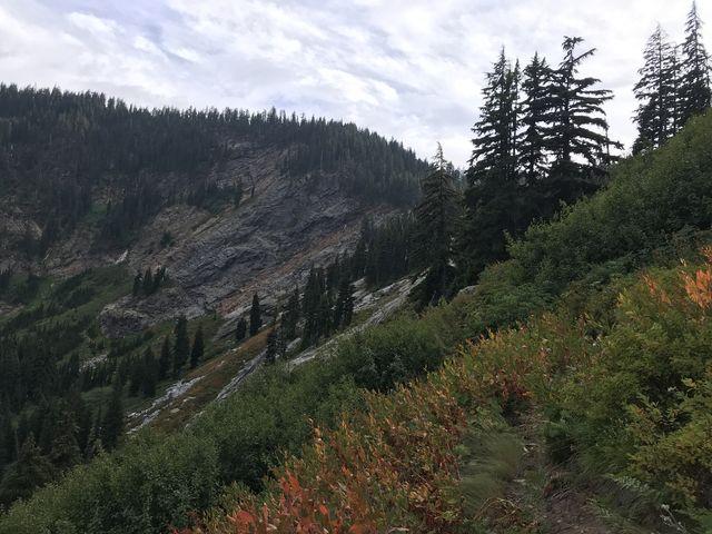 Climbing an overgrown meadow back up to the Mallard-Larkins crest (Martin Creek trail)