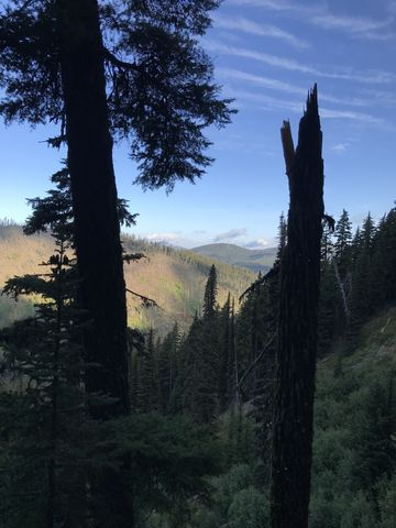 View from trail #11 towards Snow Peak