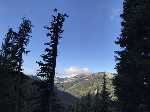 Looking back towards Mallard Peak from trail #11