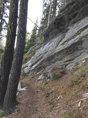 Trail #11