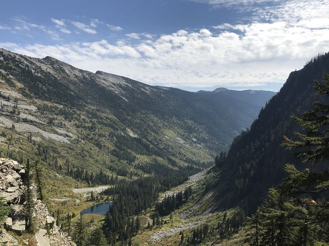 Looking out over the Swamp Creek valley