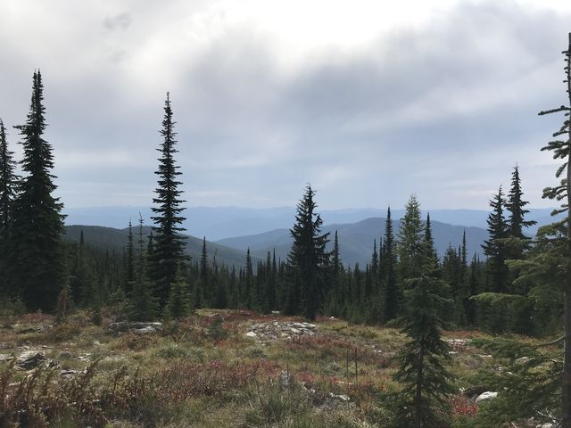 View from the Goat Ridge trail to the haze (Rampike fire) over the Coeur dAlene Mountains