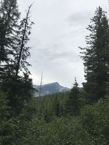 Engle Peak, taken from Bearpaw trail