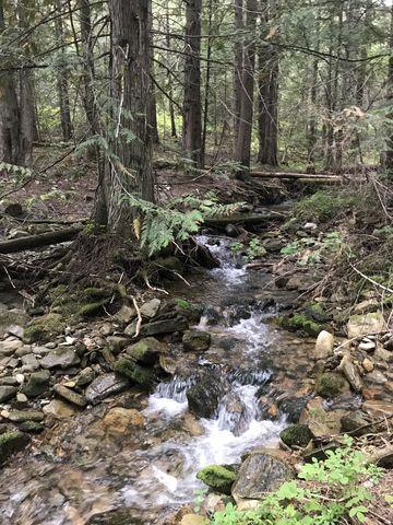 McKay Creek